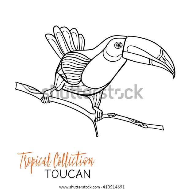 Toucan Bird Coloring Page For Kids | Guacamaya dibujo, Dibujos ... | 620x600