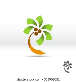 Tourism icon. Logo template palm tree with coconuts. Vector illustration.