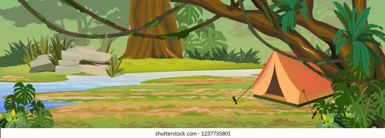 Tourist tent in the jungle. A tropical forest. River. Rainforests of Amazonia. Tree, epiphytes, creepers and monsteras. Realistic Vector Landscape