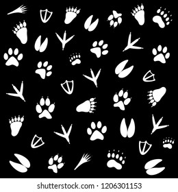 traces of animals are different, wildlife. vector illustration