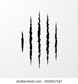 Traces from the claws of the monster. Claw scratch mark. Animal scratch isolated on transparent background. Shred paper. Vector illustration