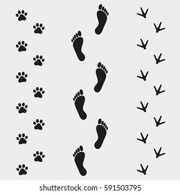traces of human and bird dog on a gray background