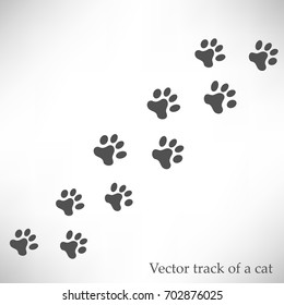 Track of a cat. Vector