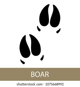 Track of Forest Animal,Trace of a Predatory Animal Boar, Vector Illustration