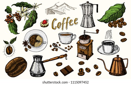 Traditional Filter Coffee Maker. Modern vintage elements, percolator, plants, grain and kettle for the shop menu. Vector illustration. engraved hand drawn in old sketch for card, badges, labels.