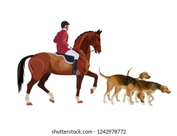 Traditional fox hunting with dogs. Hunt master and pack hounds. Vector illustration isolated on white background