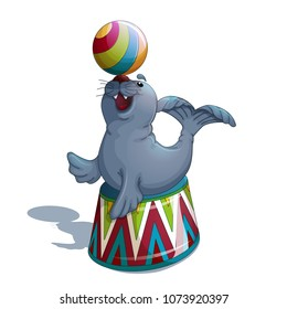 A trained merry seal or fur seal sits on a circus stand and holds a bright striped ball on the nose. A circus character in the style of a cartoon. Vector Illustration.