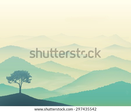 Vista Landscape