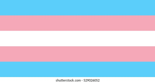 Transgender flag vector