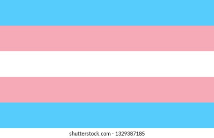 Transgender or transsexual pride LGBTQ flag icon sign flat vector