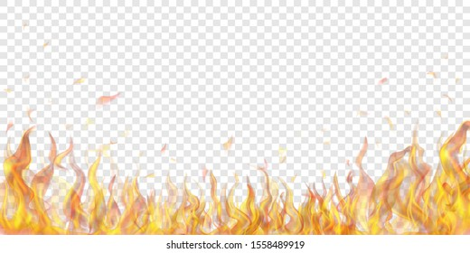 Flames Transparent Background Hd Stock Images Shutterstock