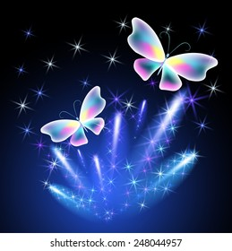 Transparent butterfly and glowing firework
