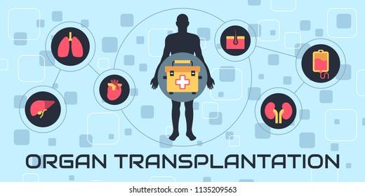 Transplantation. The most common transplanted human organs: heart, liver, kidney, bone marrow, skin, pancreas.