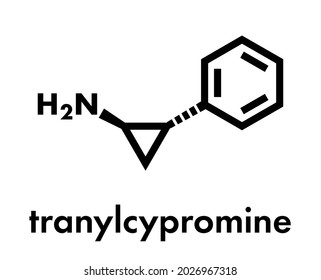 Tranylcypromine antidepressant and anxiolytic drug molecule. Irreversible inhibitor of the enzyme monoamine oxidase (MAO). Skeletal formula.