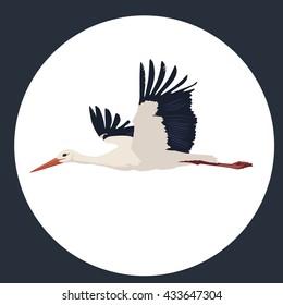 travel, stork