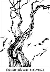 tree. Bark of tree