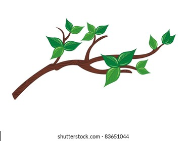 Tree Branch Images Stock Photos Vectors Shutterstock