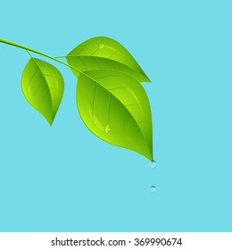 Tree branch over the water. Vector illustration.
