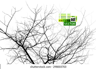 Tree branches background. Vector