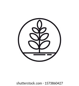 tree with branches line style vector illustration design