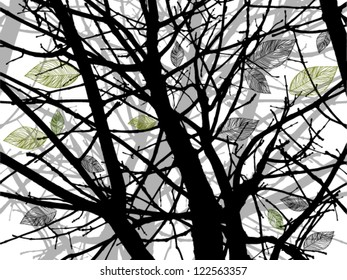 tree branches silhouettes. Vector illustration.