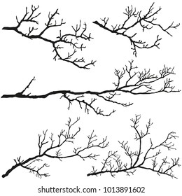 Tree branches without leaves. Black silhouettes on a white background.