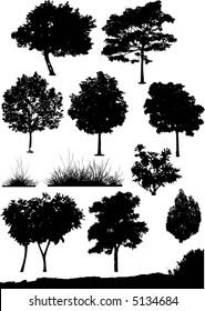 tree, bush and background