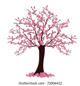 tree with cherry blossoms - vector