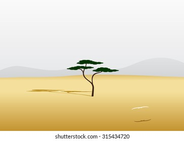 a tree in the desert against the gray sky and a bird