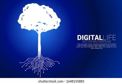 Tree with from digital line connect dot circuit board style. Background concept for digital transformation.