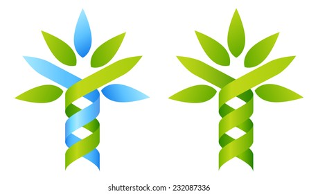 Tree DNA concept of DNA double helix growing into a stylised plant shape. Great for medical, science, research or other nature related use.