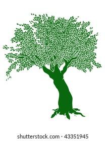 Tree Drawing - Vector Illustration