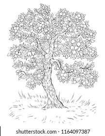 the tree of fertility. a tree with a harvest of apples .monochrome contour picture