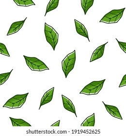 Tree foliage or mint leaves falling down. Evergreen bushes and leafage, tropical plant or botanic flora. Background or print with freshness and greenery. Seamless pattern, vector in flat style