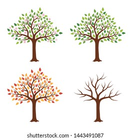Tree in four seasons - spring, summer, autumn, winter. Isolated on white background. Abstract image. Flat style, vector illustration.