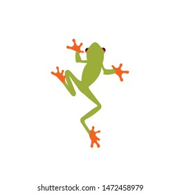 Tree frog vector, exotic frog icon on a white background