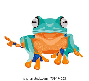 Tree frog, wallace, illustration, vector