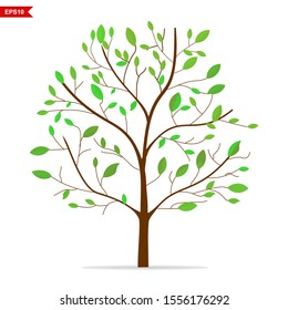 tree with green leaves, vector