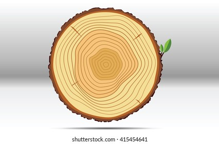 Tree growth rings wood vector.