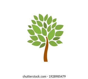 Tree icon. Nature, park. Vector image.