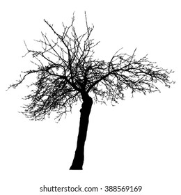 Tree - irregular - bare branches - black silhouette - on white background -vector