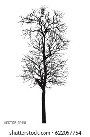 tree isolated on white. Vector
