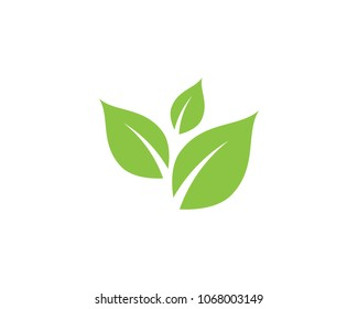 Tree Leaf Vector icon Illustration design template
