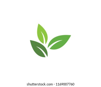 Tree leaf vector logo design, eco-friendly concept