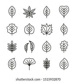 Tree leaves flat line icons set - aspen, linden, maple, willow, chestnut, oak, acacia. Autumn plant pixel perfect collection. Vector illustration.