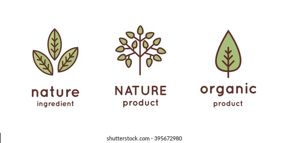 Tree, leaves, nature, organic icon and logo in vector. Linear design