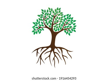 A tree with leaves and roots logo icon.
