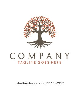 Tree of Life, oak banyan leaf and root seal emblem stamp logo design inspiration