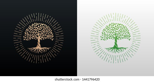 Tree of life with rays round shape design vector gold and green gradient isolated on black and white background