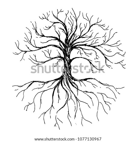 Tree of life - vector illustration with tree and roots silhouette. Hand drawn ink illustration